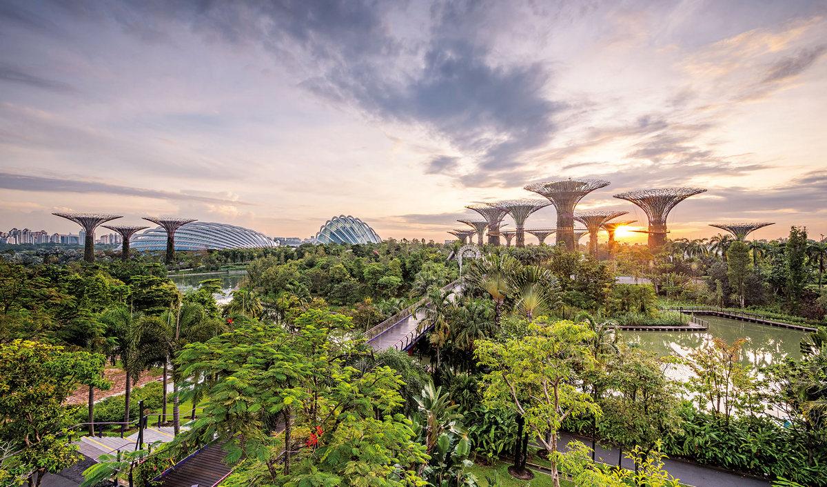Singapore Builds 42,000 Home Green Smart City