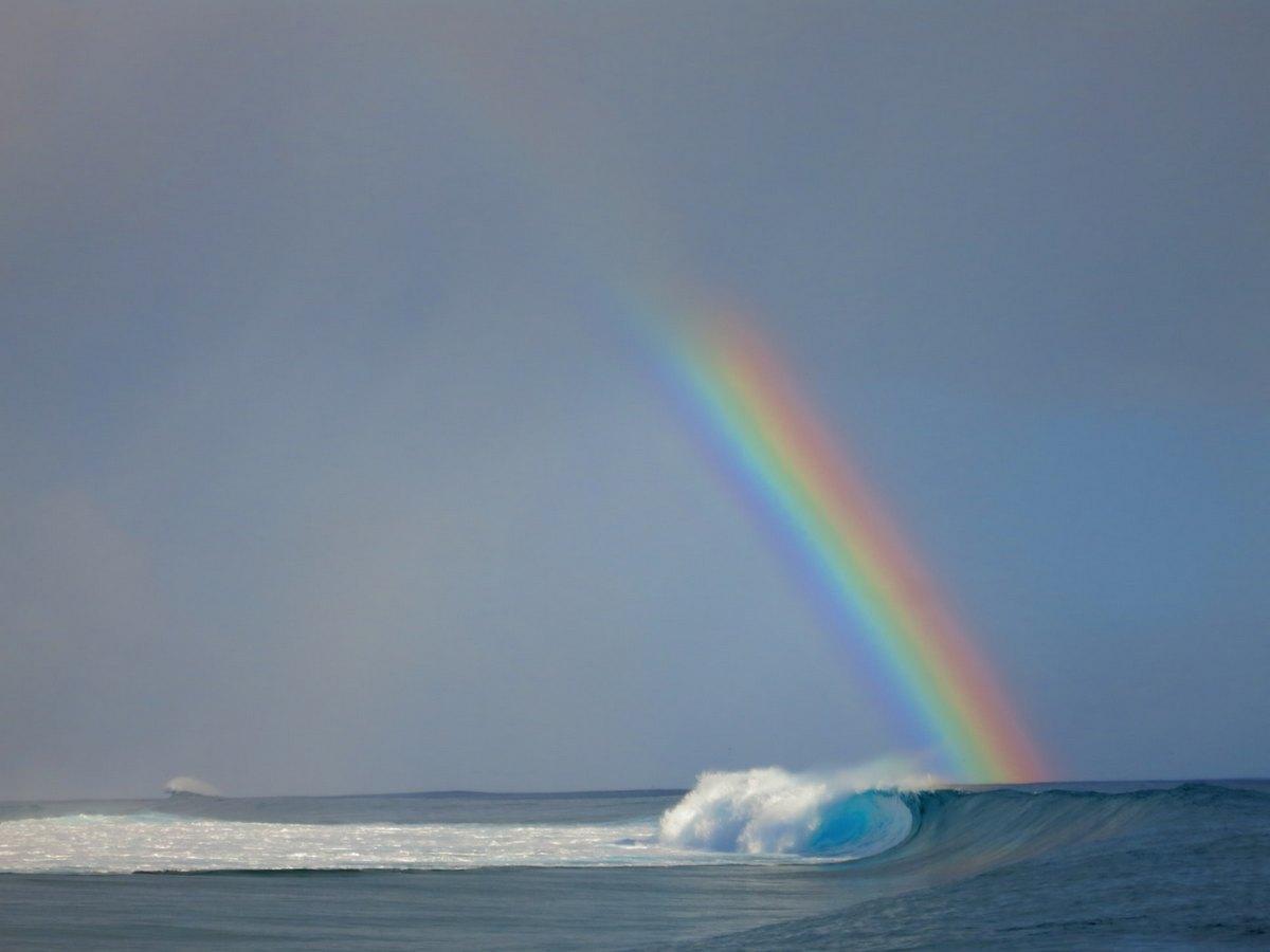 Гаваї оголошені веселковою столицею світу