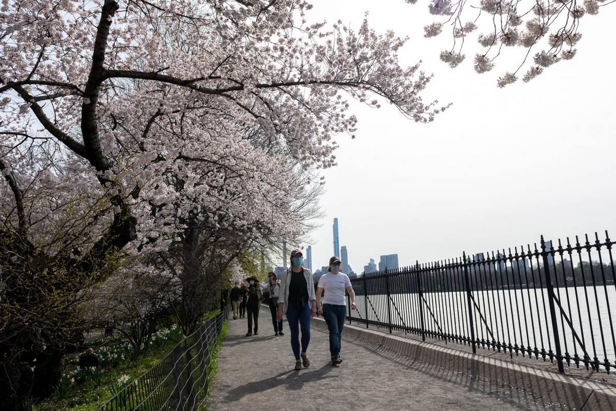 Мер: Нью-Йорк до 1 липня повністю відкриється