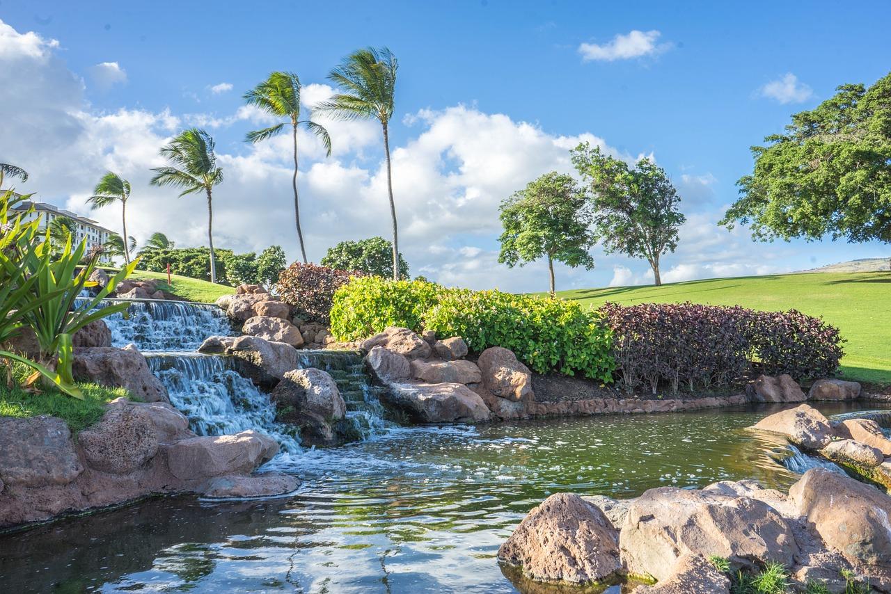 Что нужно знать о поездке на Гавайи этим летом